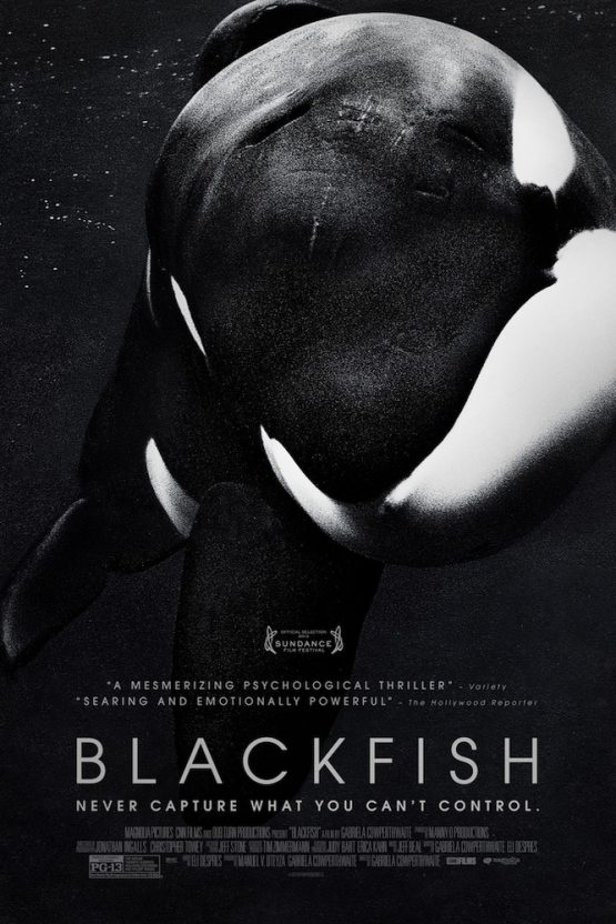 Blackfish Dvd